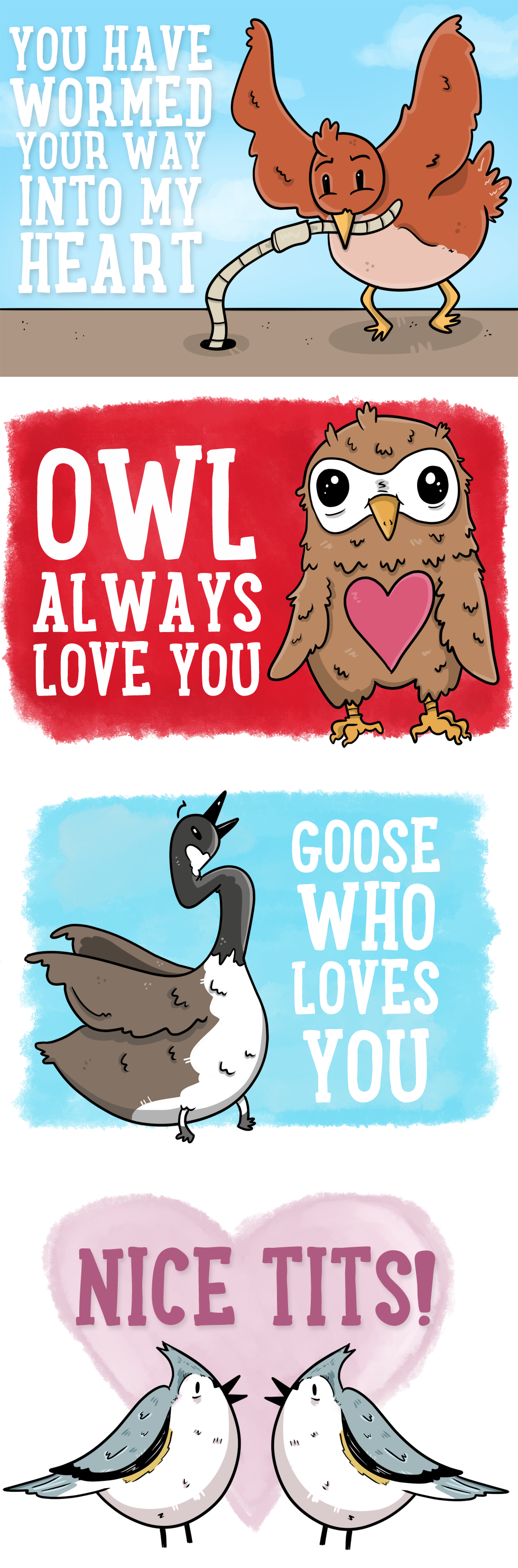 Valentines is for the Birds